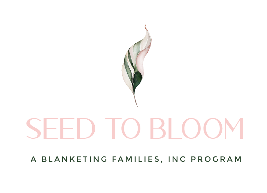 Seed to Bloom